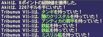 1115_03.JPG