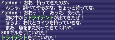 1205_01.JPG